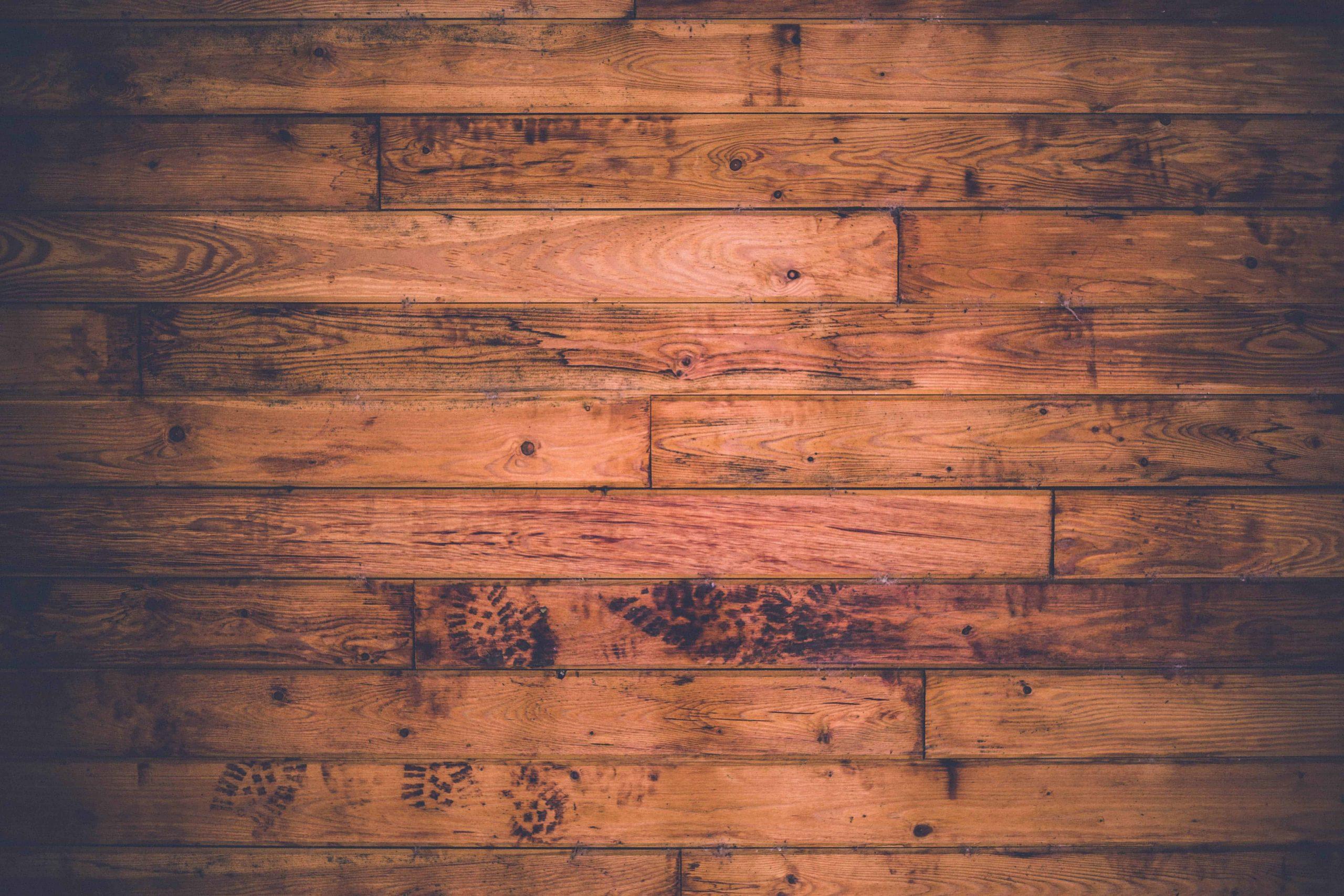 Best Primer for Bare Wood